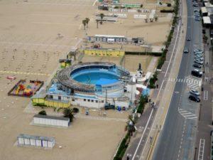 delf in spiaggia